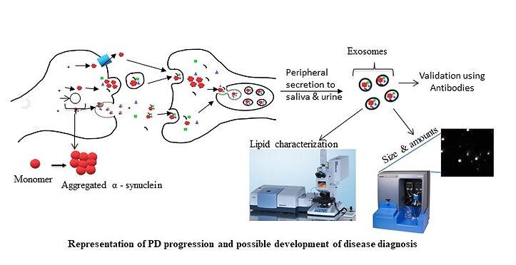 Parkinson Scheme.jpg