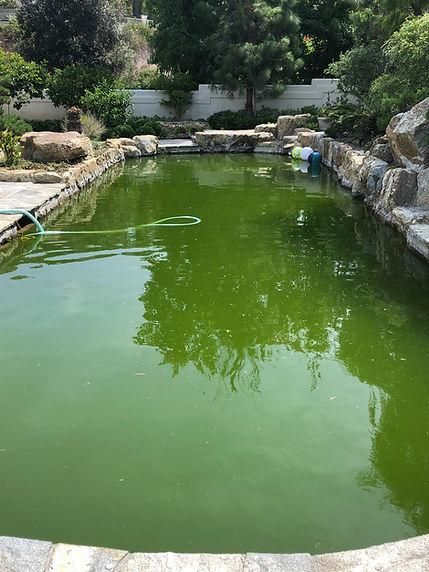 Pool Before Chlorine Wash