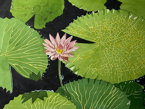 """""""Naples Gardens Lotus"""" Original watercolor by Artist Shah Hadjebi"""