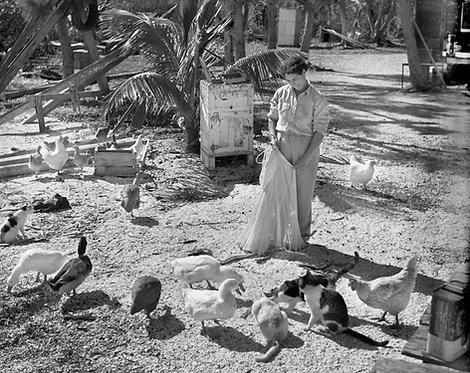 """""""Esperanza Feeding Ducks"""" by Charlie McCullough"""