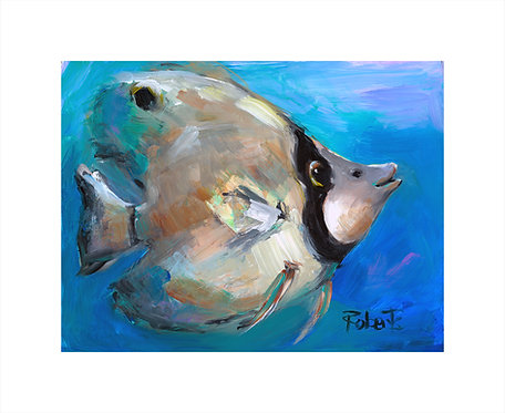 """""""Daisy"""" by Joan Roberts 16x20 Matted Print Tropical Fish"""