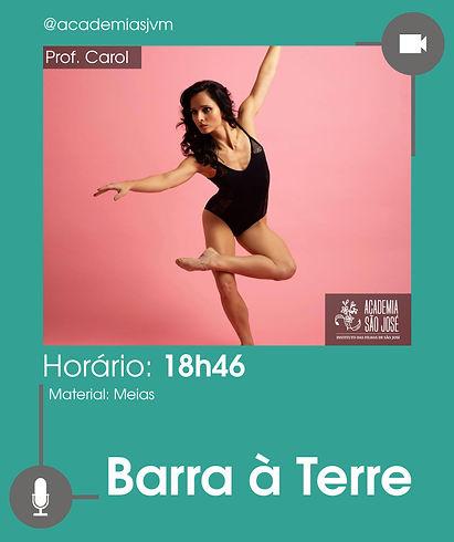 20_05_Barra_à_Terre.jpg