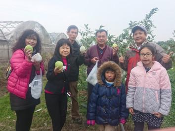 台南開心有機農場 聯誼採果樂