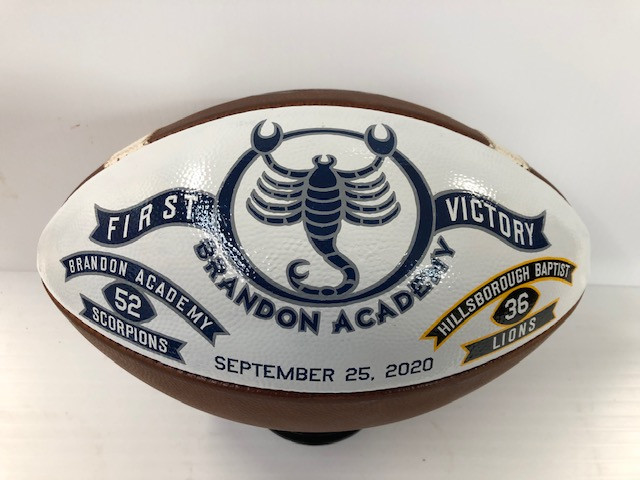 Hand painted Championship Footballs