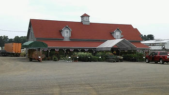 Wholesale Produce | United States | Dickinson Farm & Greenhouse