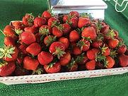 Dickinsons-strawberries.jpg