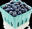 blueberries-carton.png