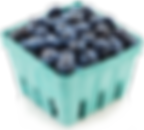 blueberries-carton.png