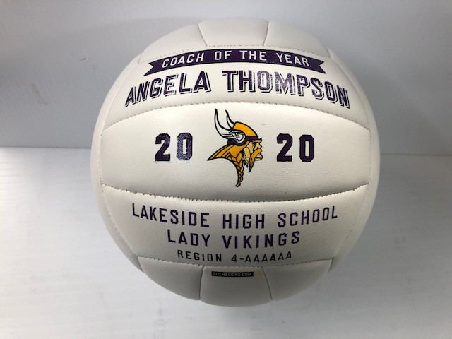 Hand Painted Volley Ball Coach Awards