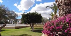 Gezamelijke tuin Casa Myna