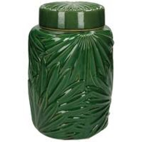 Jar palm big