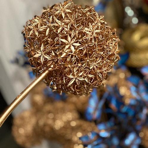 Gold Allium 75cm
