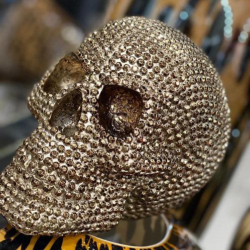 Skull bronze/gold