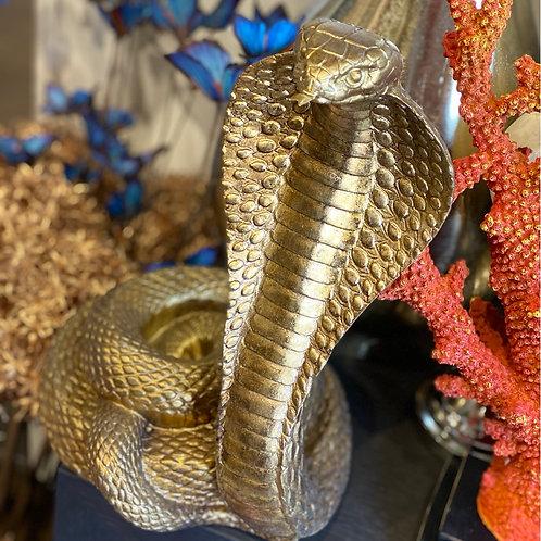 Cobra gold 32