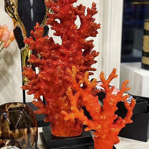 Koraal Aida XL Orange