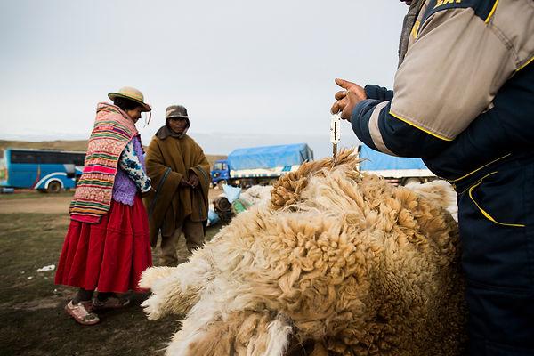 181115_MHP_Bolivia_441.jpg