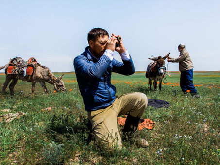RETURNING THE STEPPE