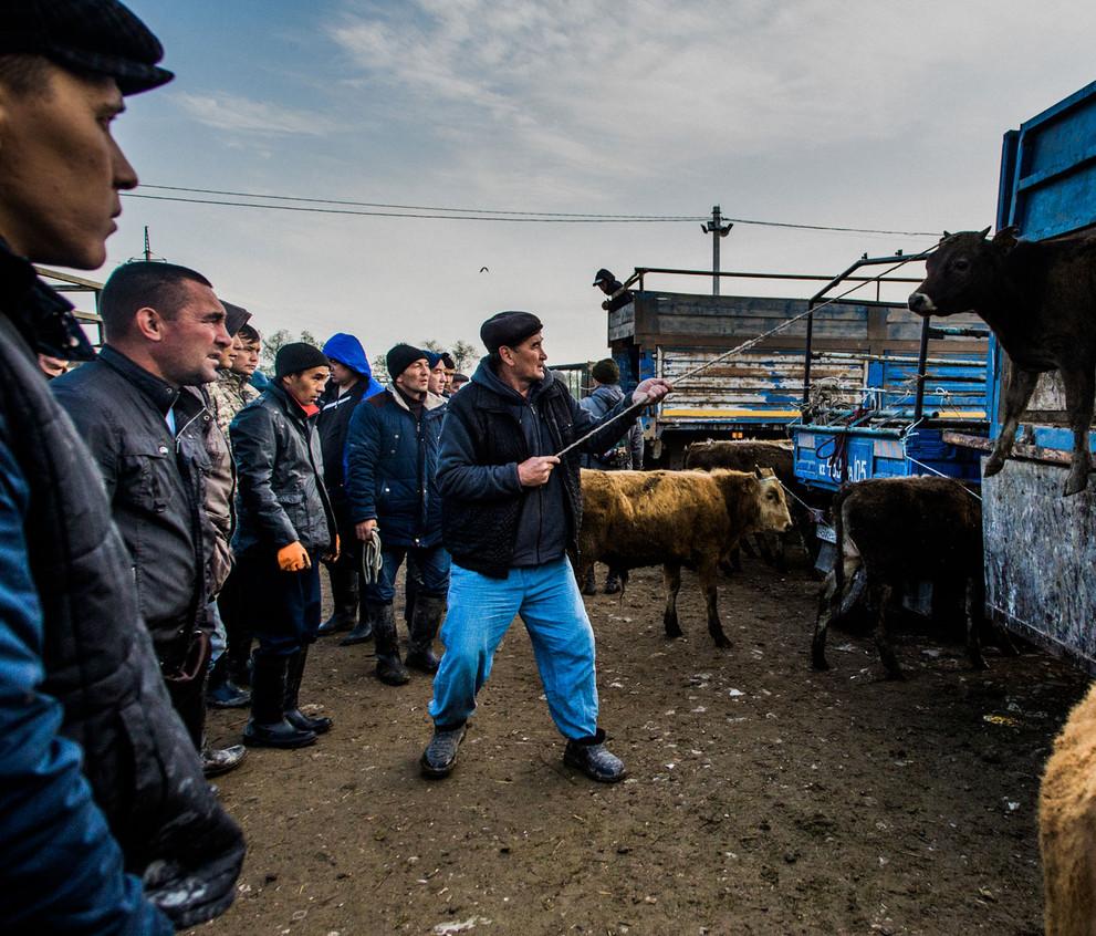 160501_MHP_Kazakhstan_81.jpg