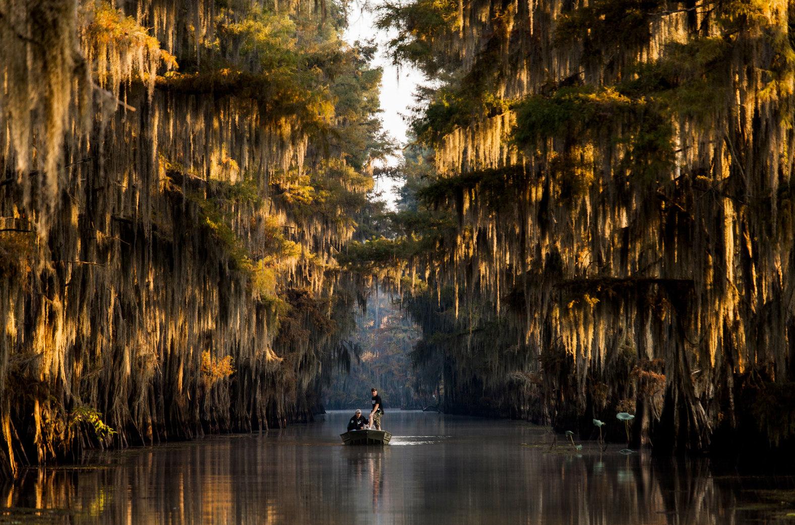 Caddo Lake, TX  ||  Southern Living Magazine