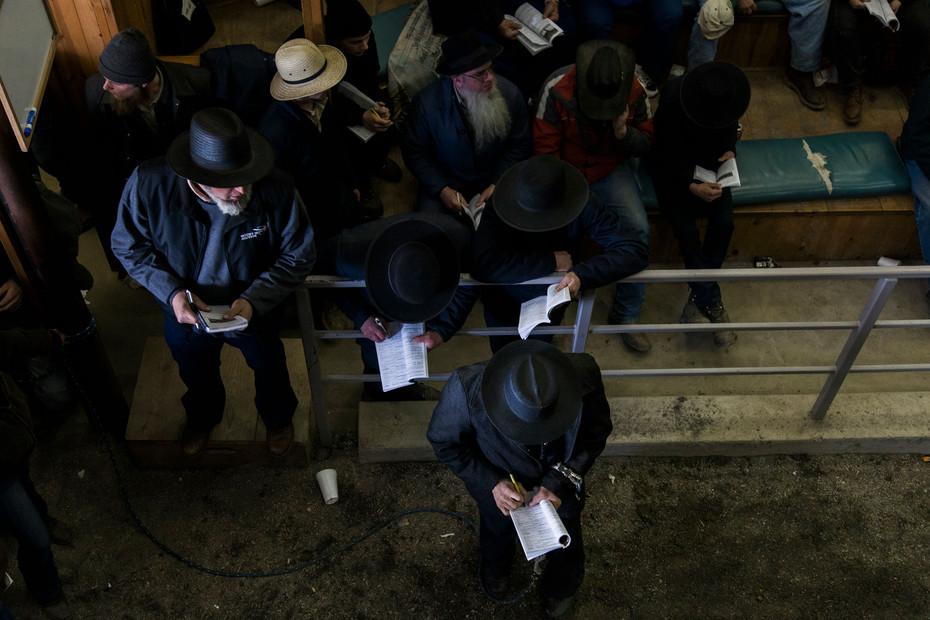 120307_MHP_Amish_1166.jpg