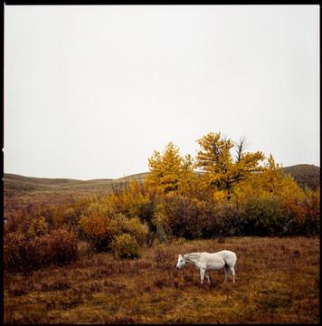131201_MontanaFilm_150-2.jpg