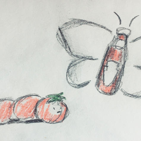 housenka - motýl.JPG