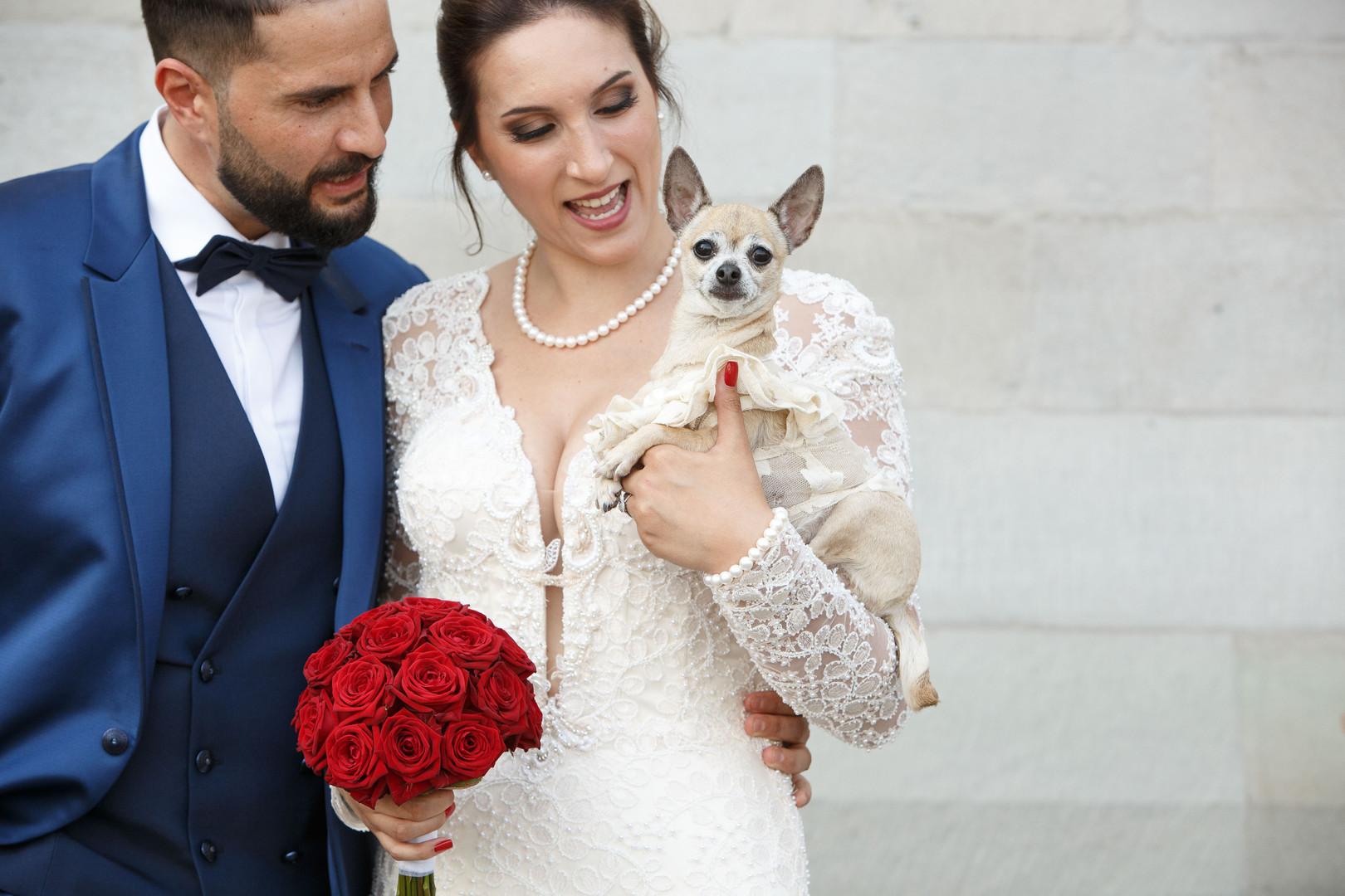 Corona Hochzeit mit Hund