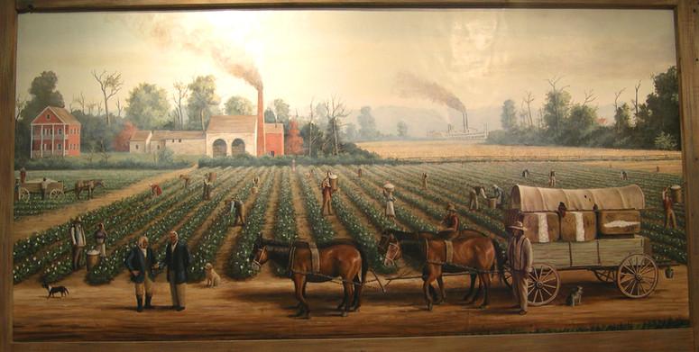 Cotton Plantation Scene