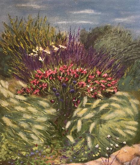 Cotignac flowers