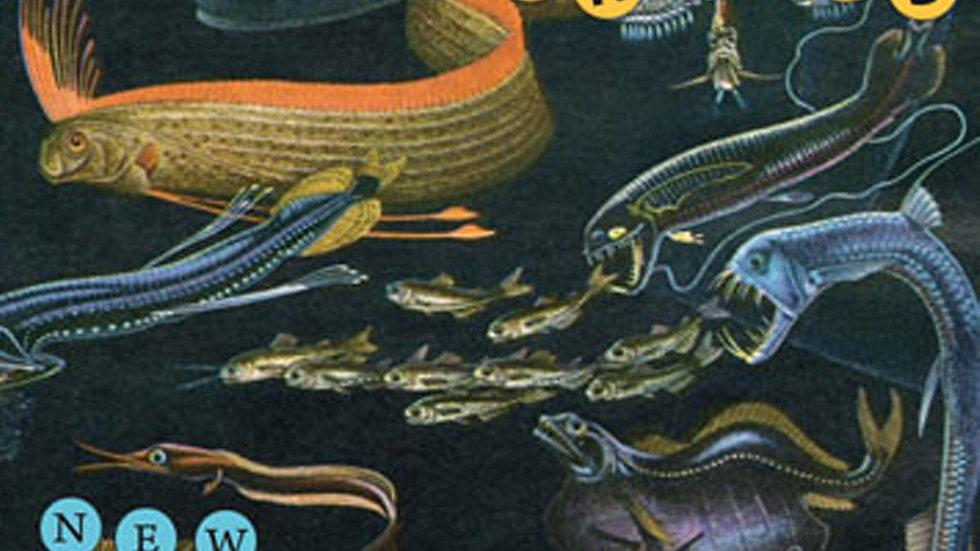 THE BANANAS - New Animals (CD)