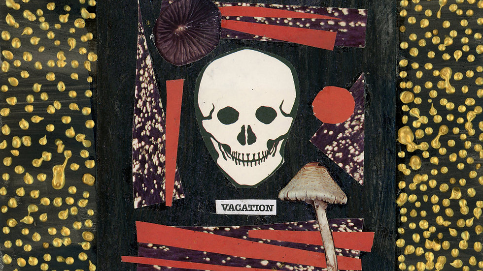 VACATION - Mouth Sounds#2699 LP