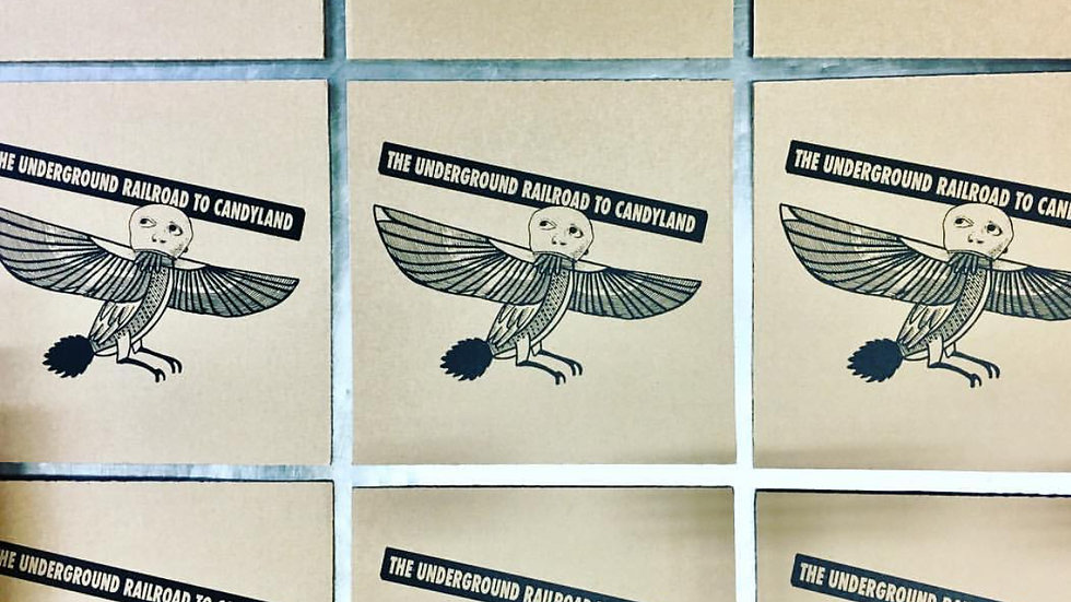 THE UNDERGROUND RAILROAD TO CANDYLAND-Bird Roughs LP (Limited screen)