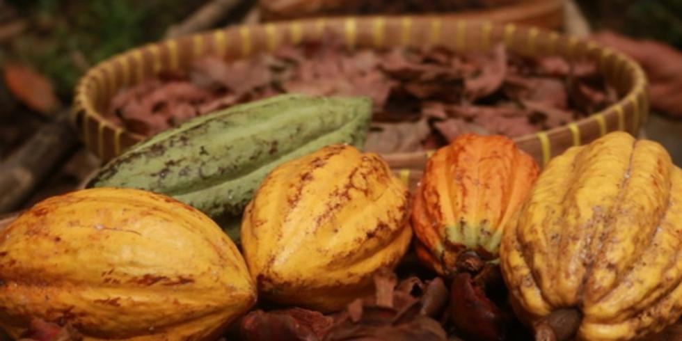 Cacao Zeremonie