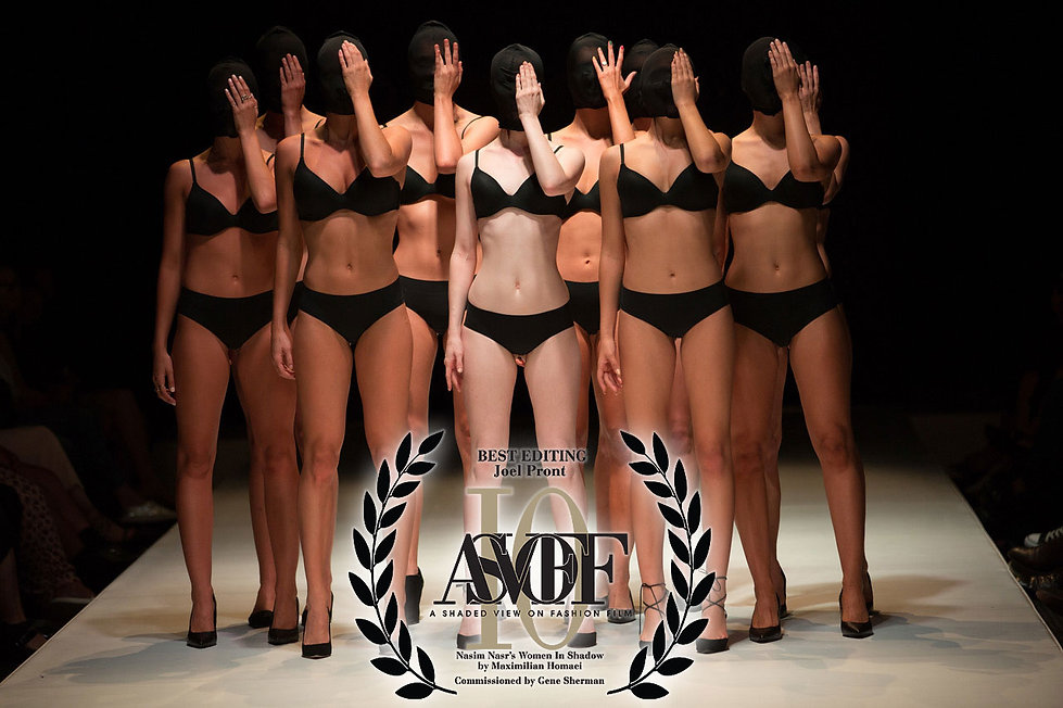 Best-Editing-Max-Homaei-Women-in-Shadow_