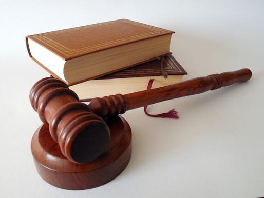 Kakšne spremembe nam prinašata noveli Stvarnopravnega ter Kazenskega zakonika?