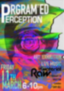 Gentrificaton exhibition poster - Prgrm2ed Perception  (Programmed perception)