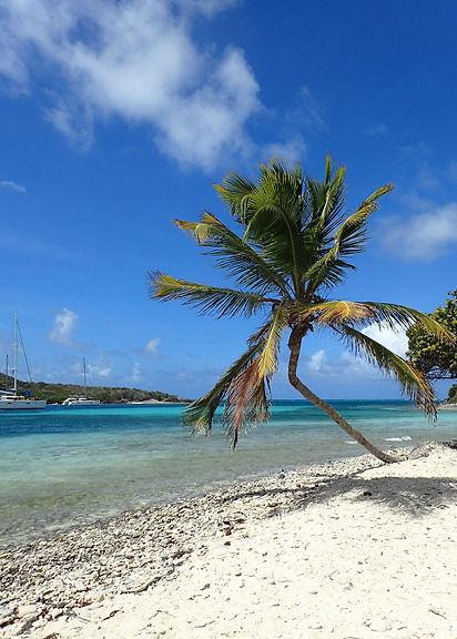 Grenadines.jpg