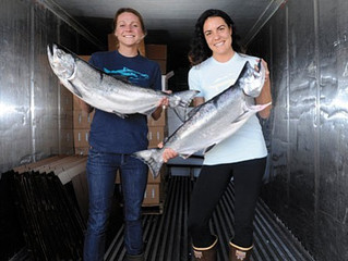 Bountiful Catch for Sustainable Seafood Investors: Finalists in Fish 2.0 Competition