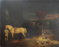 Esterno con Cavalli