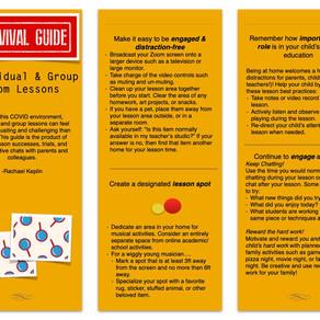 Miss Rachael's Survival Guide to Suzuki Zoom-ing