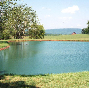 Pond Repair in Lucketts, VA