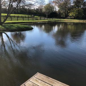 Pond Repair in Waterford, VA