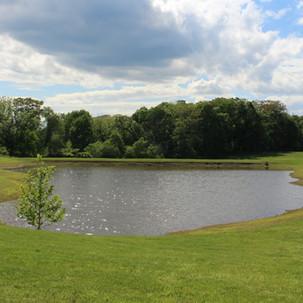 Pond Repair in Lucketts, VA