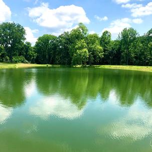 Loudoun County Pond