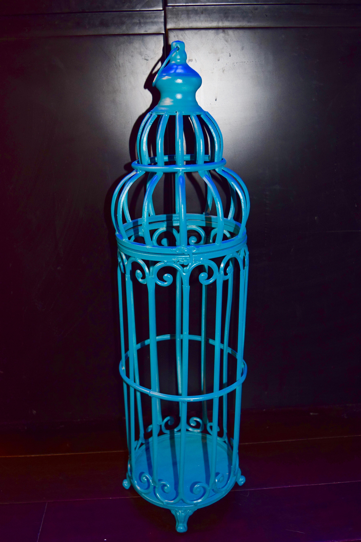 Blue Birdcage #1 $10