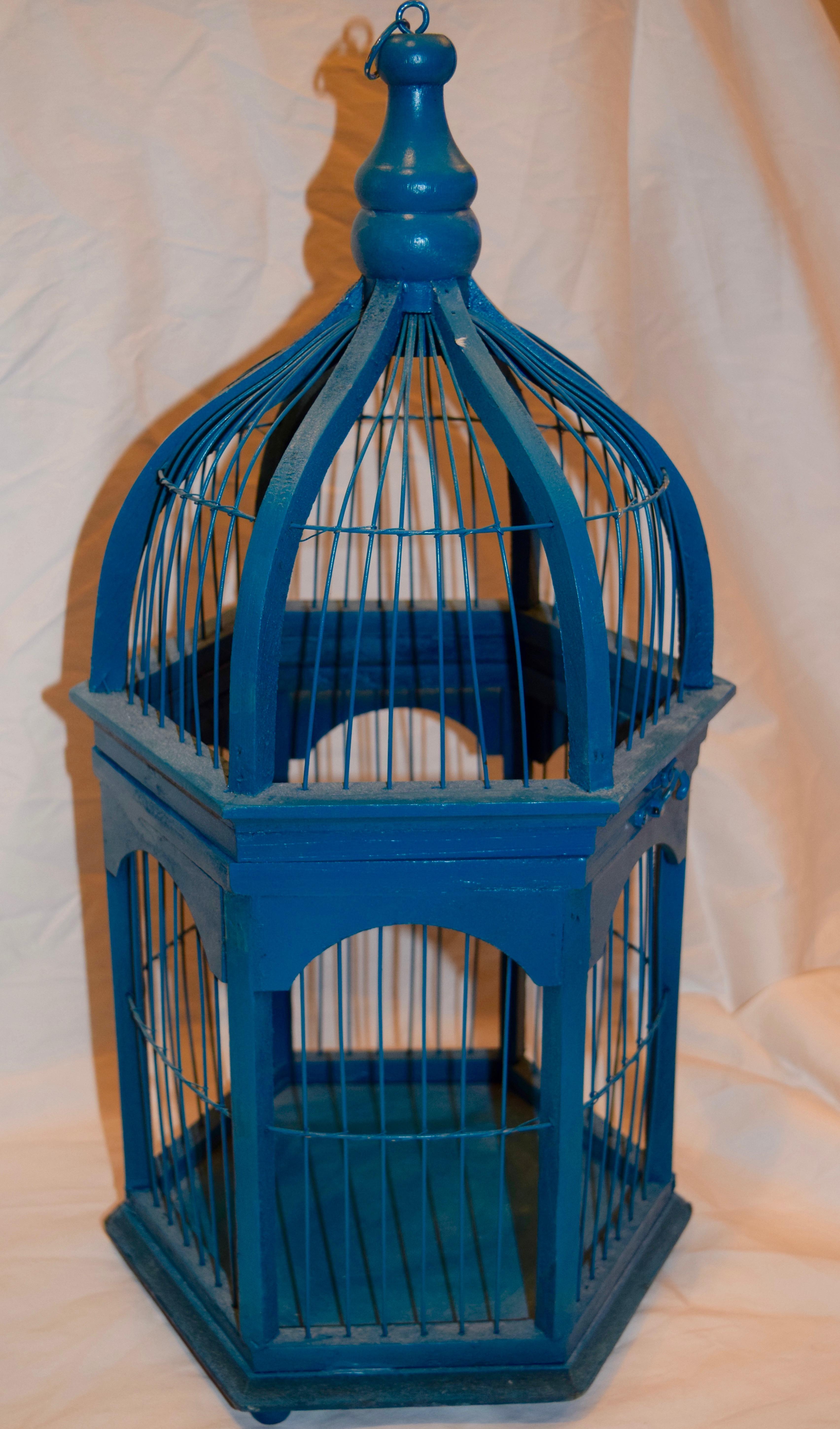 Blue Birdcage #2