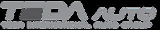 Celient Logo-02.png