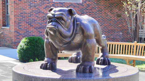 The Dwight-Englewood School Bulldog