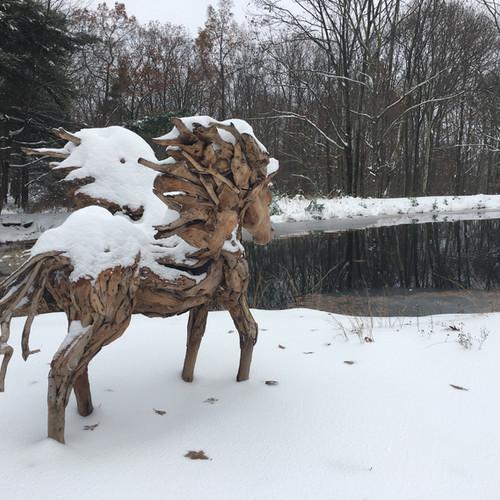 Snowy Zeus