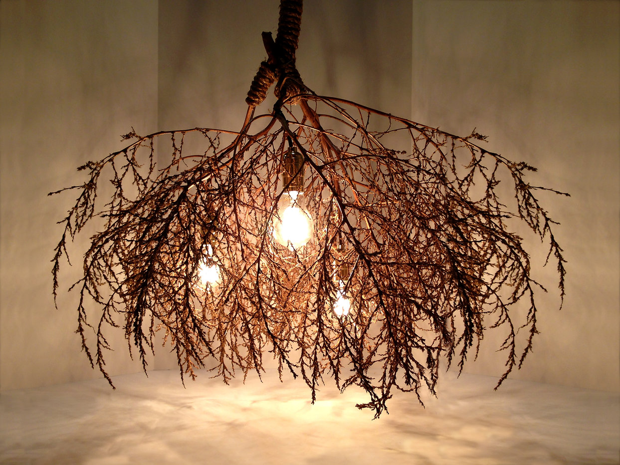 Same Tree Native Chandelier Classic. Modern design with a natural touch.